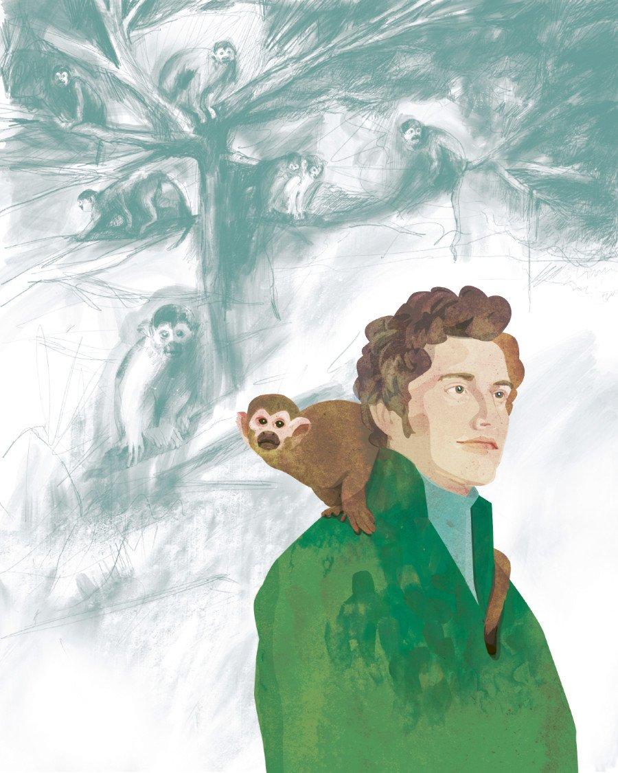 Neugierig blickt das Kapuzineräffchen dem großen Forschungsreisenden Alexander von Humboldt über die Schulter