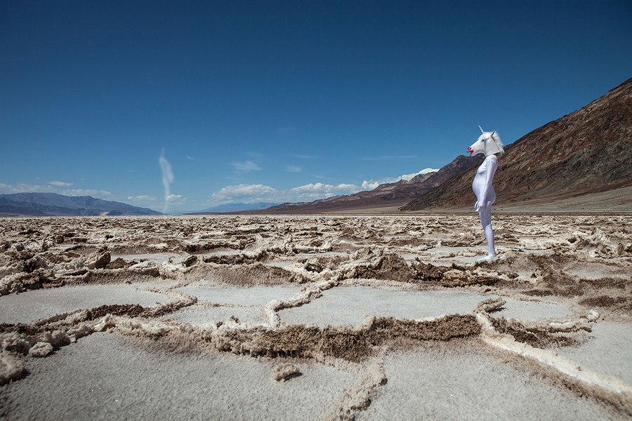 Fabelwesen werden lebendig: Die Kollektion Dreamscapes von ANCHOVY entführt uns in eine geheimnisvolle Welt. © Julija Goyd