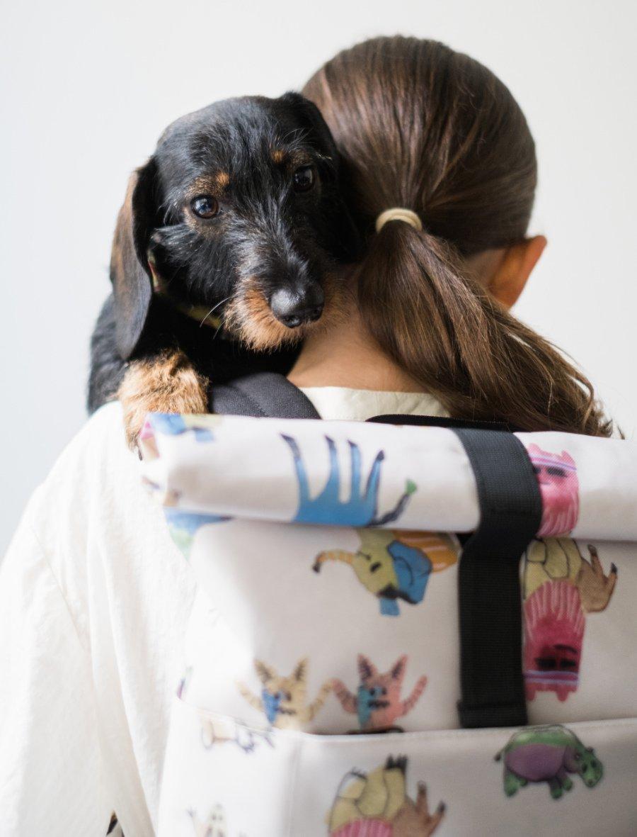 Da wird der Hund in der Pfanne verrückt: UCON ACROBATICS entwirft jetzt auch Rucksäcke für Kinder