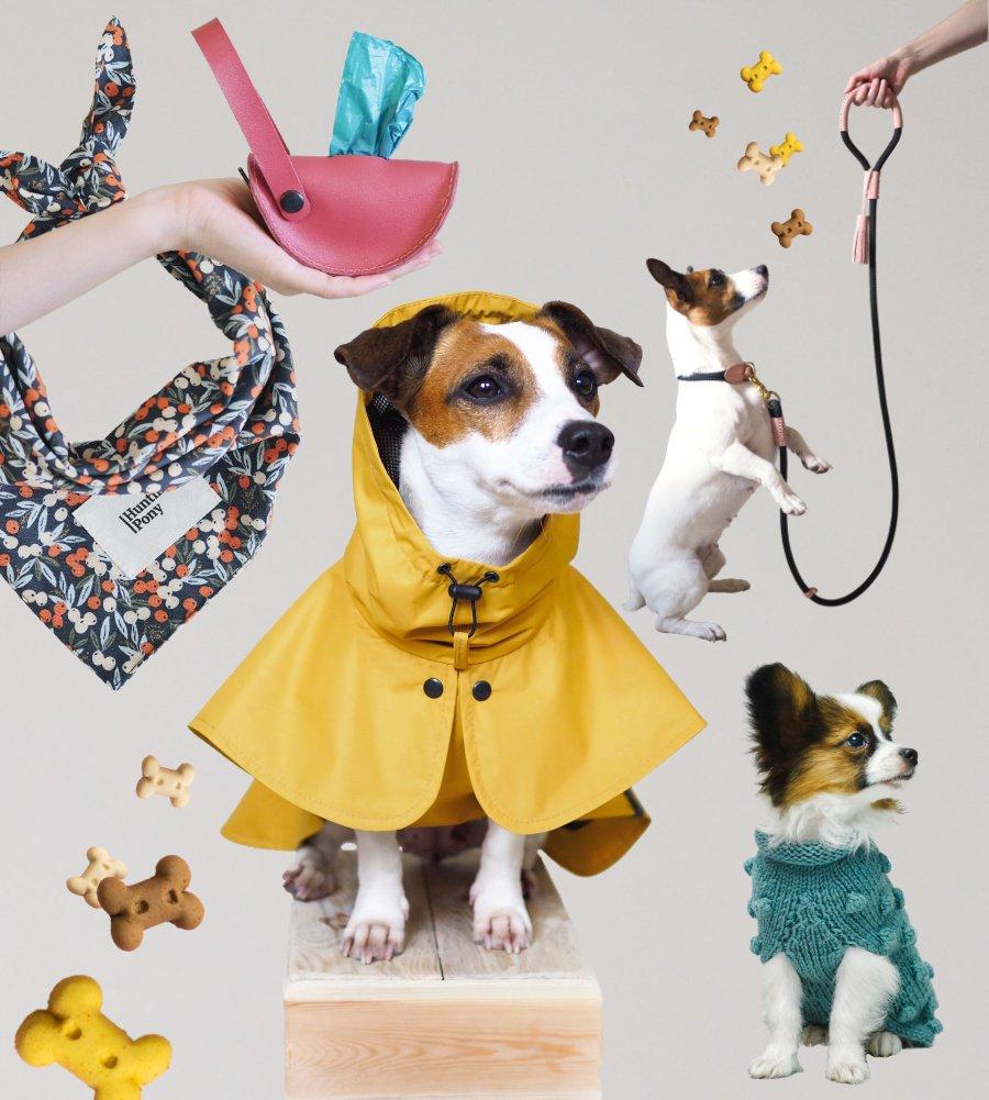 Edle Accessoires für den Herbstspaziergang von HUNTING PONY: Was für ein stylishes Hundeleben!