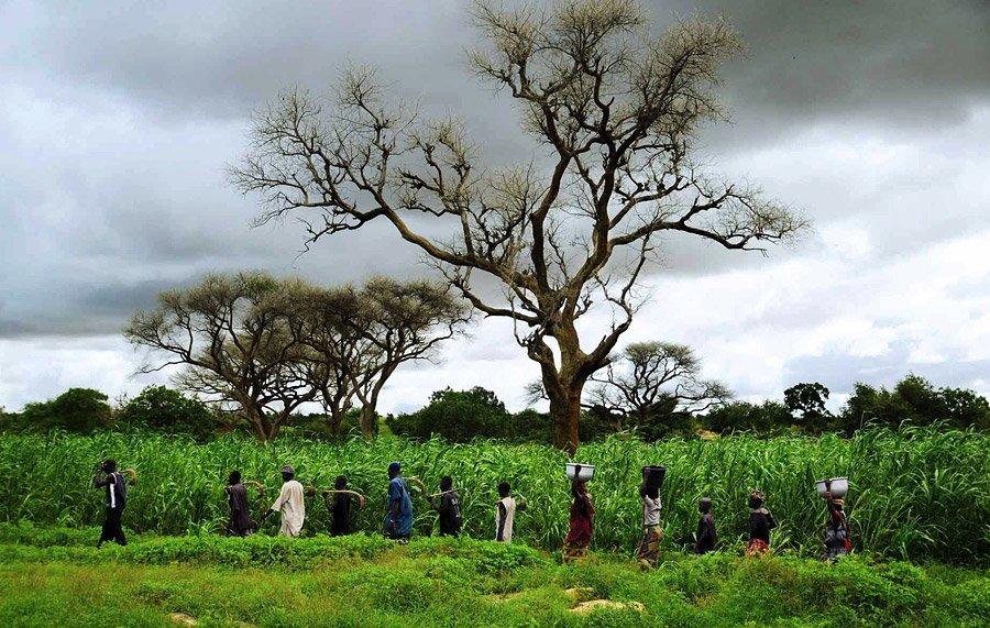 Durch diese weite Landschaften ist das Mädchen Ombo gereist