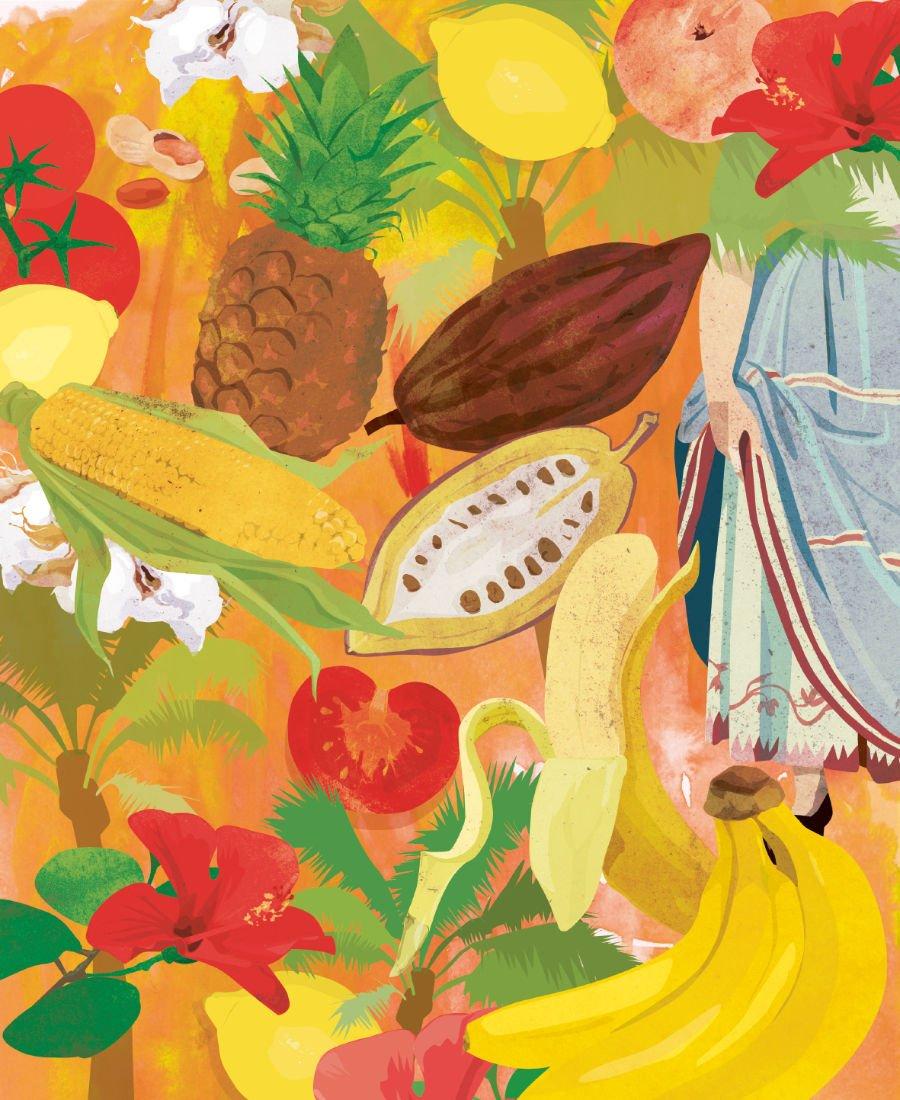 Ob indigen oder eingewandert – der farbenprächtige botanische Reichtum der Neuen Welt entzückt Alexander von Humboldt.