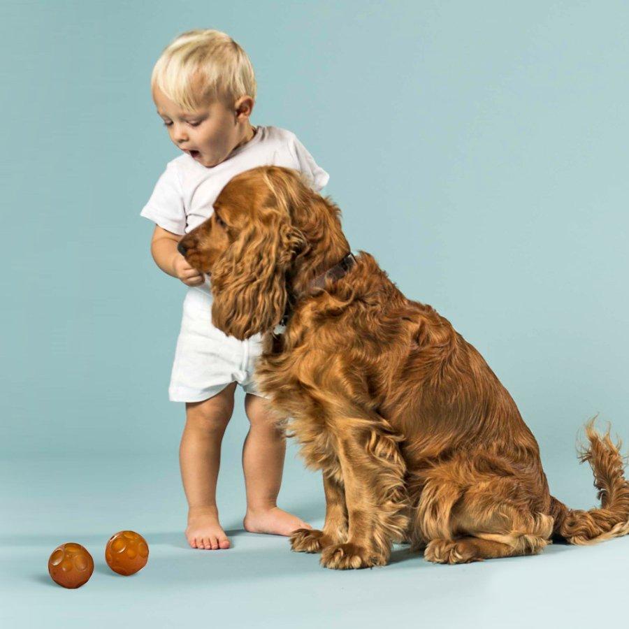 Puppies sind die neuen Babys: Nach dem Kult-Schnuller lanciert HEVEA ökologisch abbaubares Spielzeug für Hunde