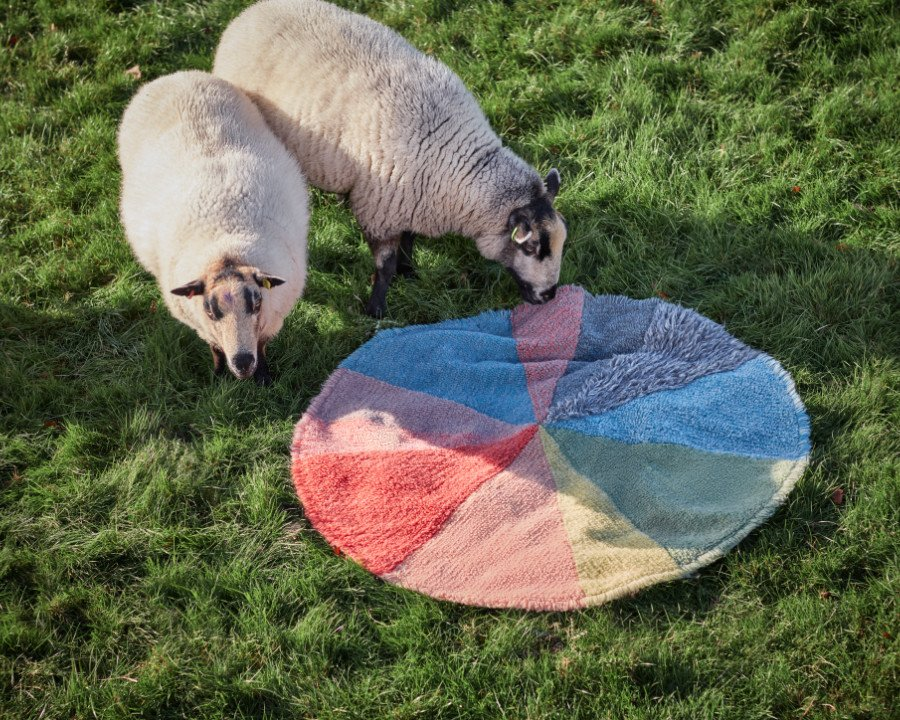 Tortendiagrammäääh! Die schottische Künstlerin Donna Wilson entwarf für Lorena Canals waschbare Teppiche wie den Pie Chart Rug