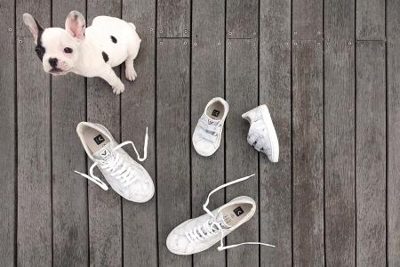 Stolz präsentiert die Bulldogge die marmorierten Sneaker von Veja X Diapers & Milk – eine Limited Edition für den perfekten Mini-Me-Look