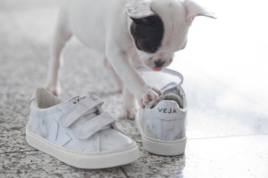 """""""Genau mein Beuteschema"""" – die kleine Dogge hat sich das Kindermodell aus der Limited Edition von Veja X Diapers & Milk gekrallt"""