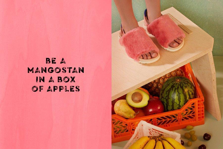 Trau dich etwas ganz Besonderes zu sein! Zum Beispiel eine Mangostan in einer Apfelkiste. © Carmen Ordoñez