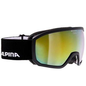 ALPINA Skibrille via alpina sports